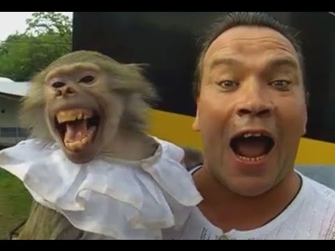 Monkey and Guy Screaming FUNNY