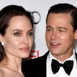 Brad Pitt and Angelina Jolie Divorcing Over Child Abuse Is Mind Boggling